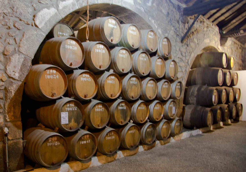 Things to do in Porto Portugal: Wine Tour