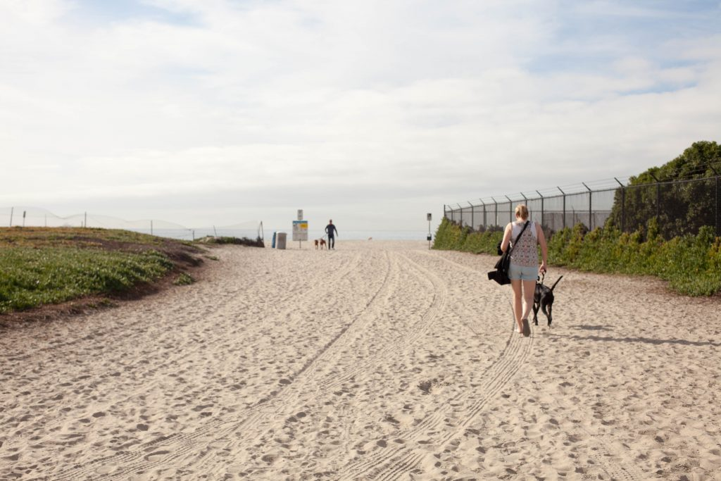 Coronado Dog Beach Entrance