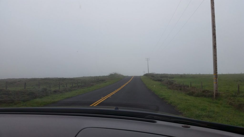 Driving Point Reyes