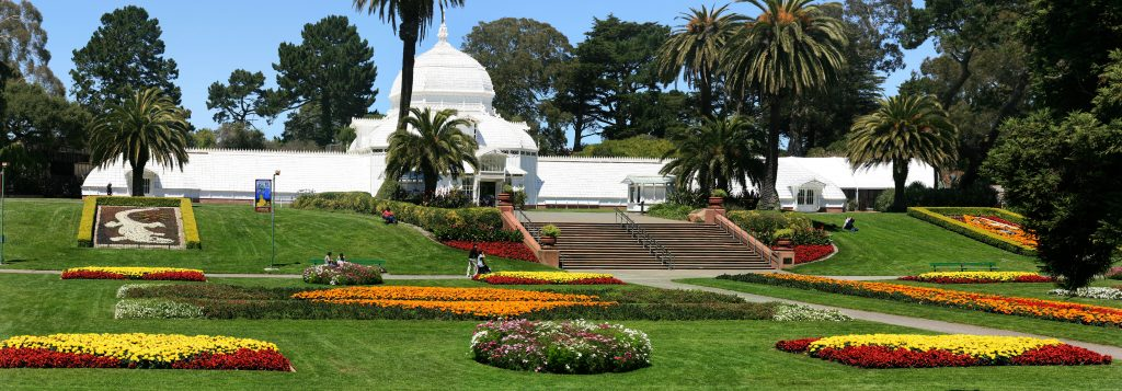 Biking Golden Gate Park