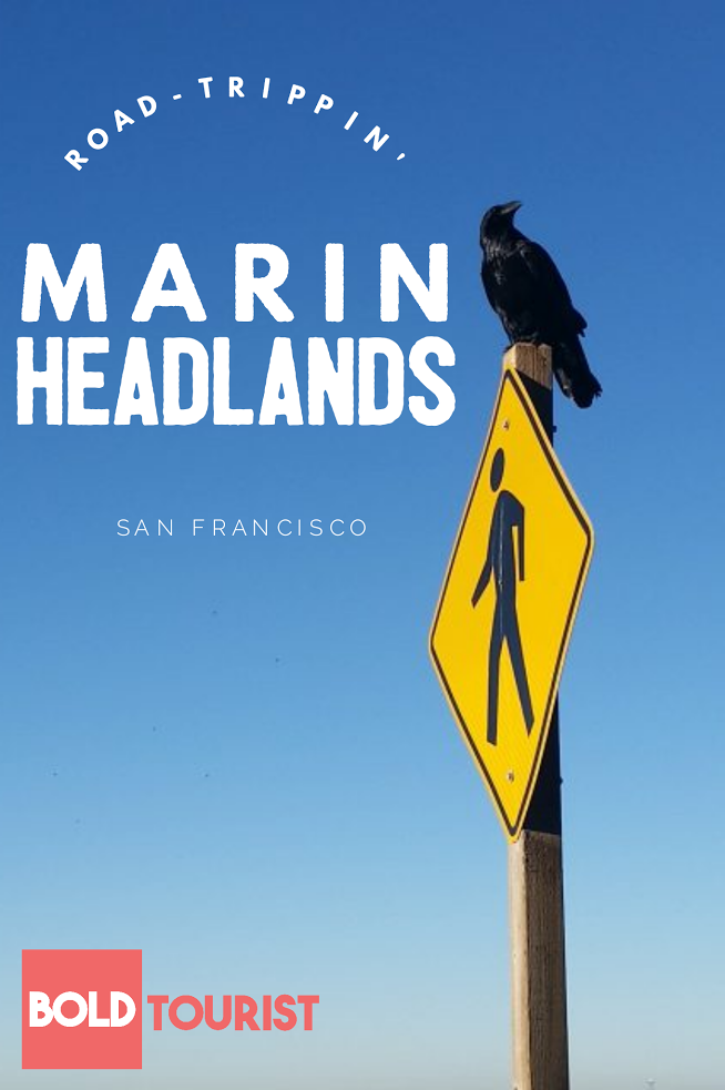 The Marin Headlands: A Perfect Day Trip from San Francisco