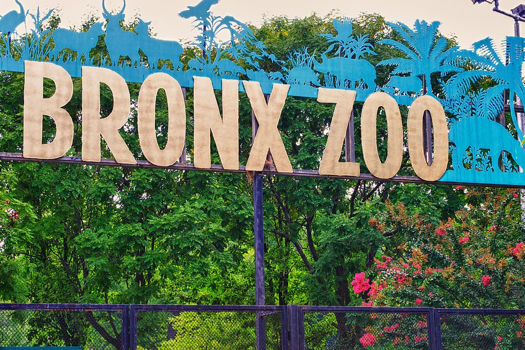 Bronx Zoo New York City