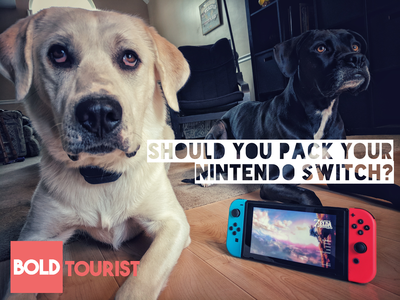 Nintendo Switch- a worthy travel companion?