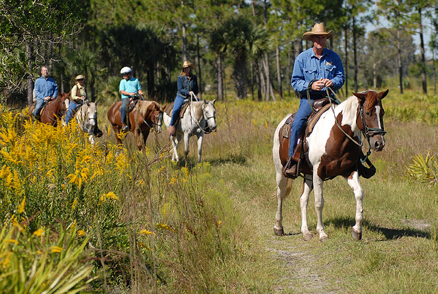 Things to do in Orlando- Horseback